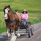 Honeymoon in the country by marchello