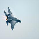 F-15 by Karl R. Martin