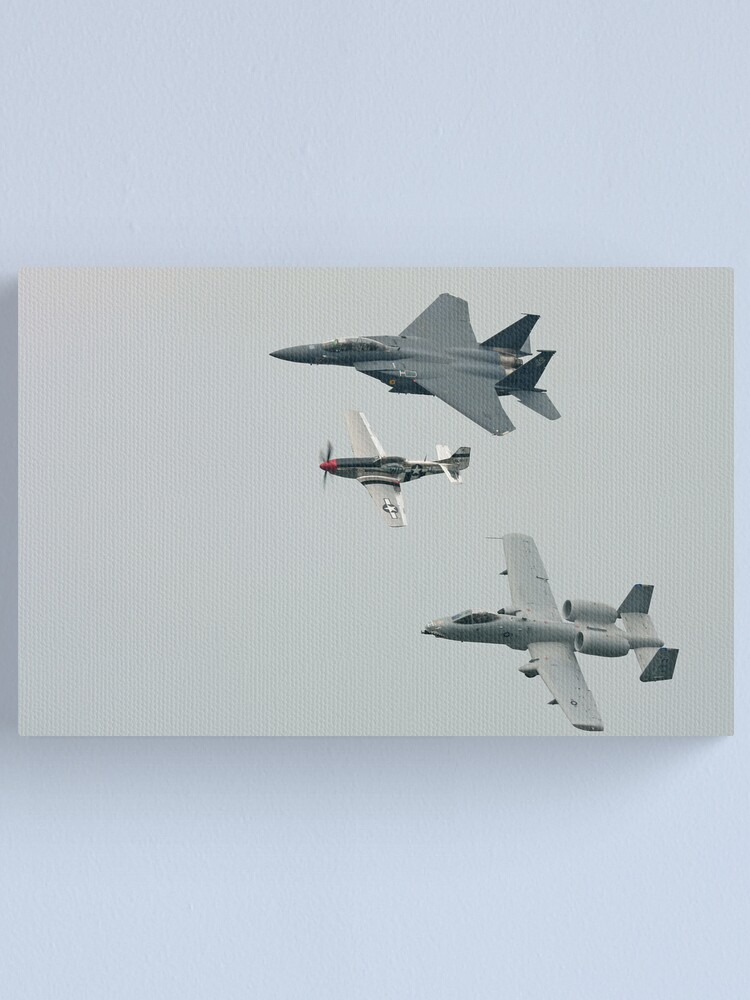 Alternate view of Heritage Flight Canvas Print