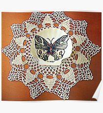 farfalla su merletto  Poster