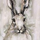 White Rabbit by Julie Mayo