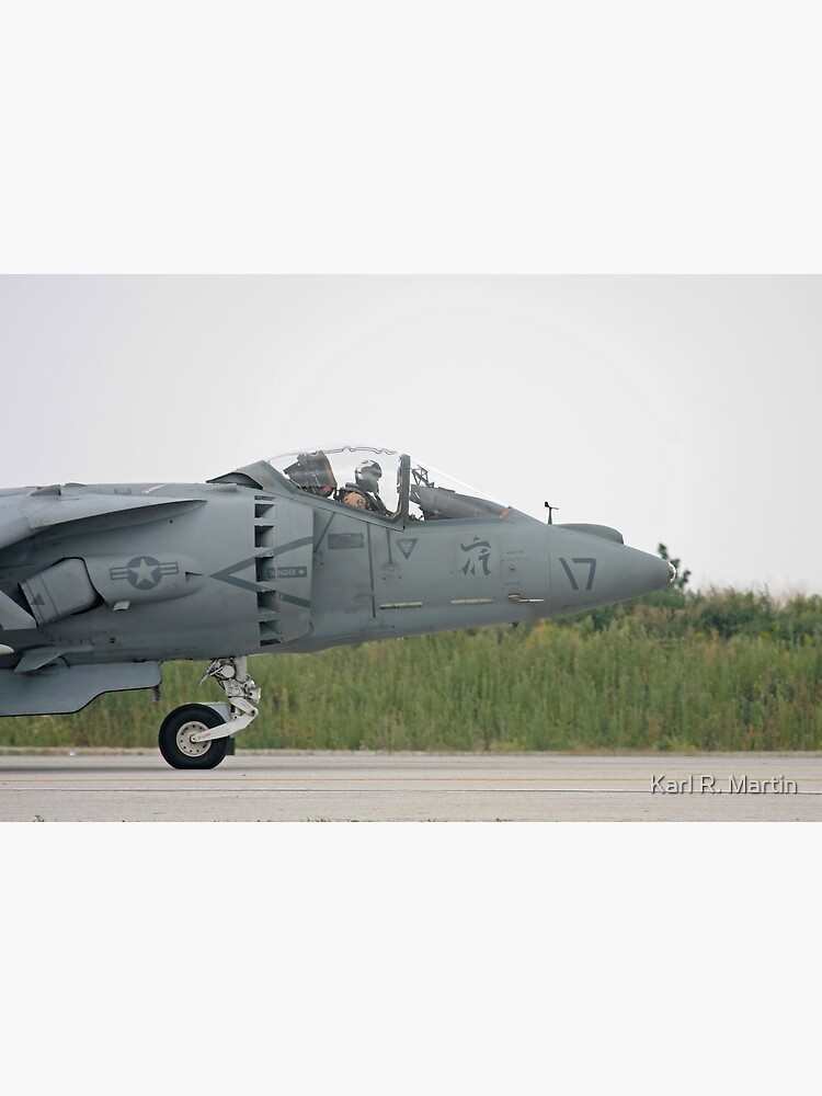Harrier by SirEagle