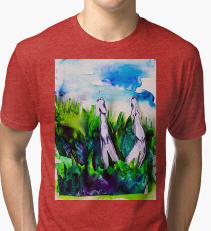 BAANTAL / Hominis / Desire #2 Tri-blend T-Shirt