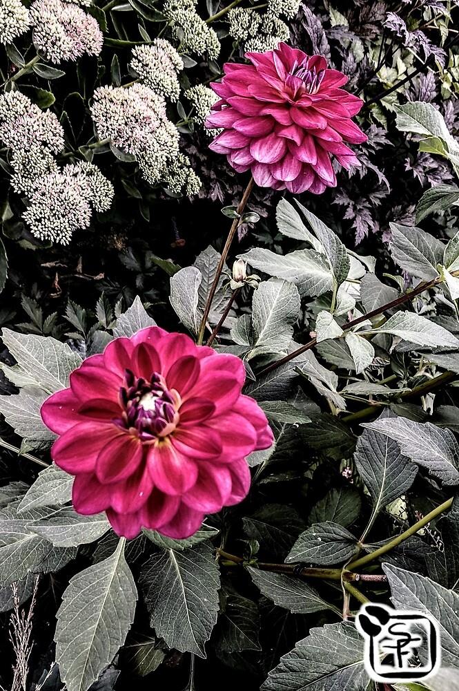 Maroon Flowers by SonneFaunArt