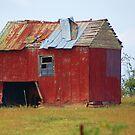 Red Barn in Virginia by dbcarolinagirl