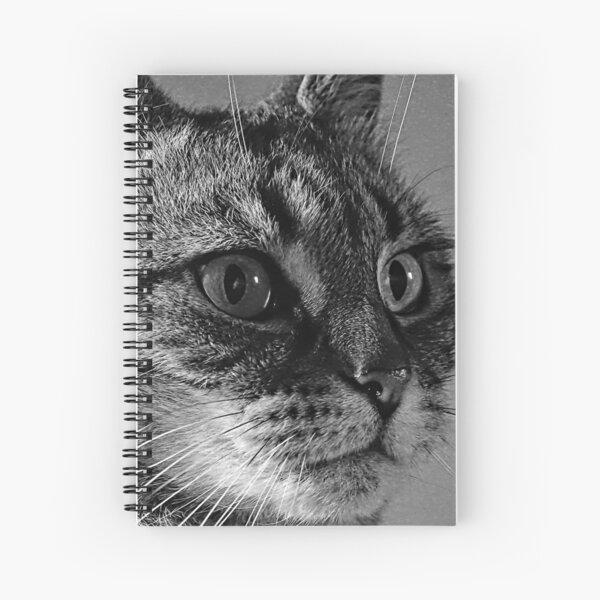 Smokey in Mono. Spiral Notebook