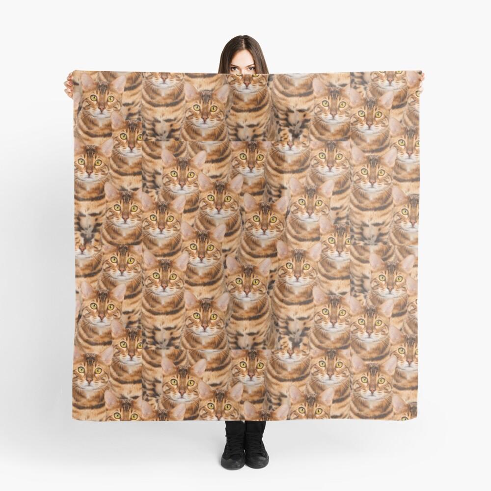Espectacular diseño de gatito de Bengala Pañuelo