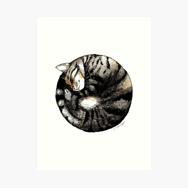 Tranquil Cat Sleeps in a Circle Art Print