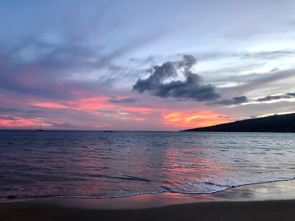 Maui Beach Sunset Smooth Waves by EricaRobbin