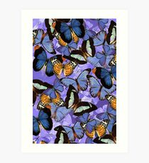 Composition With Echoed Butterflies #5 Art Print