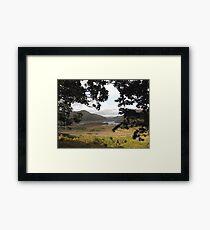 Ladies View Framed Print