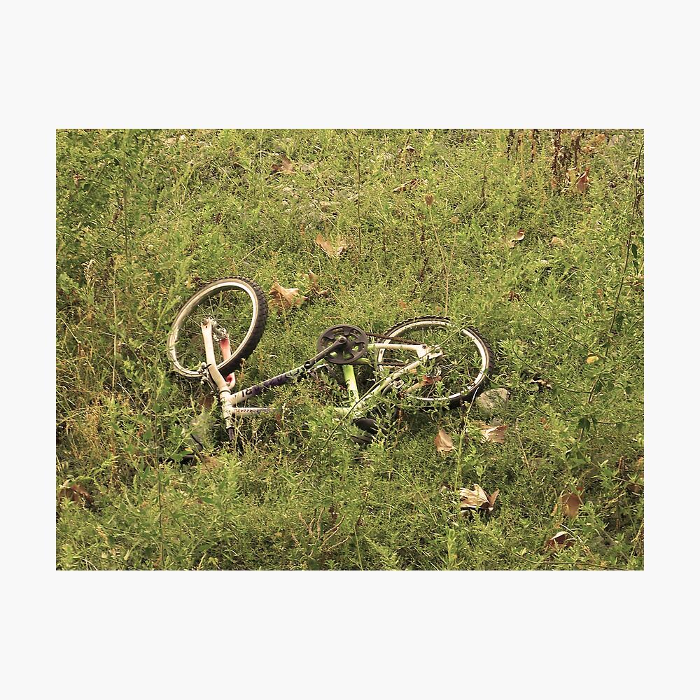 Broken Bike  Photographic Print