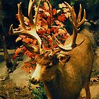 THE WISE BUCK by Michael Beers