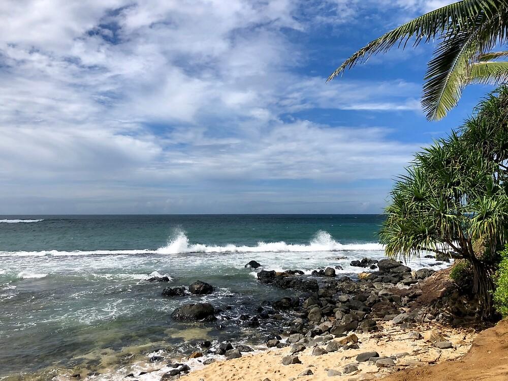 Ku'ao Cove Beach, Maui by EricaRobbin