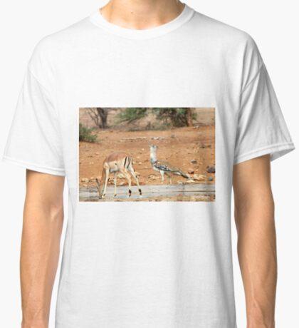 LADIES FIRST ! IMPALA & KORI BASTARD - Ardeotis kori Classic T-Shirt