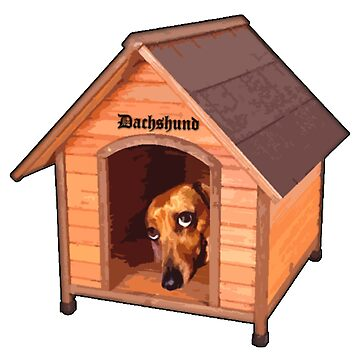 Dachshund house. by dudutbrito