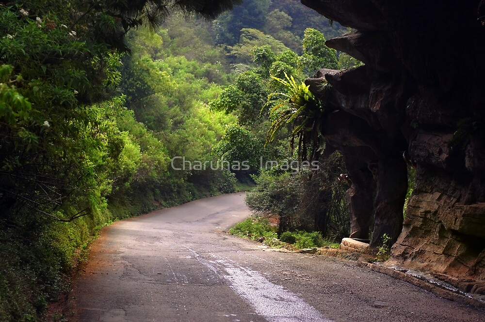 Journey in Java by Charuhas  Images