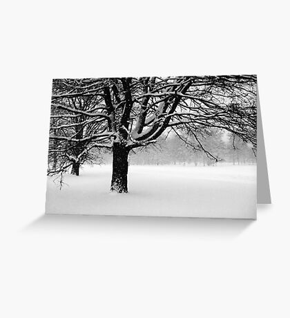 Snowing Greeting Card