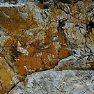 Weathered Natural Rock Texture with Lichen  by LoraMaze