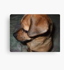 Sad Sack Canvas Print