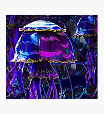 Sew up those Broken Plates and make me a Jelly Fish instead! Photographic Print