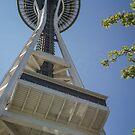 Reach for the Sky in Seattle  by John  Kapusta