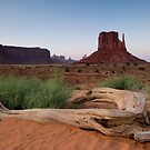Monument Valley. by Michael Treloar