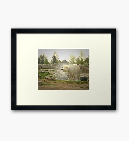After the swim Framed Print