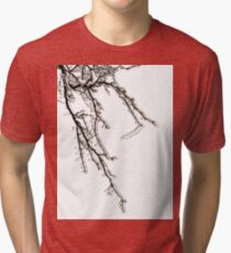 Ice on Branches Tri-blend T-Shirt