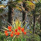Palms & Tulips by RedHillDigital