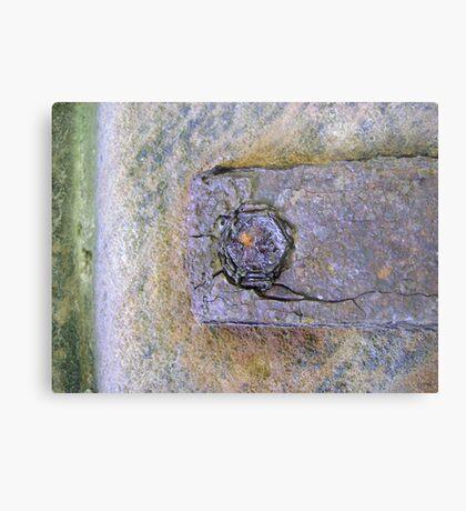 eye of rust Metal Print