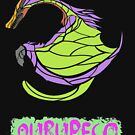 The Circular Colorful Bird by drakenwrath