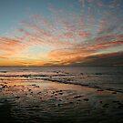 Yardie Creek Sunset by Miriam Shilling