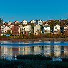 Houses on Belchers Marsh Park #01 by kenmo