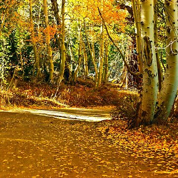JUST AROUND THE BEND by elainebawden
