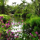 Tropical Lake at the Zoo by Rosalie Scanlon