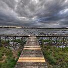 Lake Wendouree by Peter Hammer