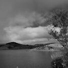 Nicasio Reservoir by Josef Grosch