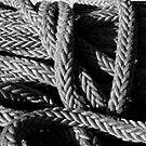 Rope #1 by Josef Grosch