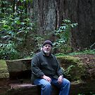 Artist in the Redwoods by Josef Grosch