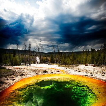 Hot sulphur pool Yellowstone by melinda