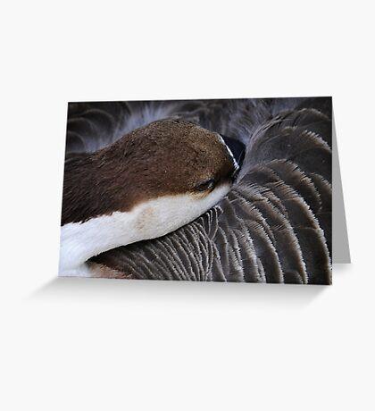 Comfort Greeting Card