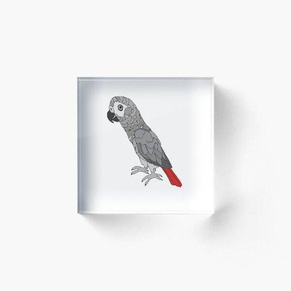 African Grey Parrot  Acrylic Block