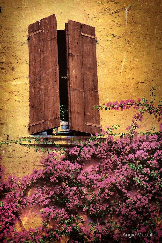 La Finestra by Angie Muccillo