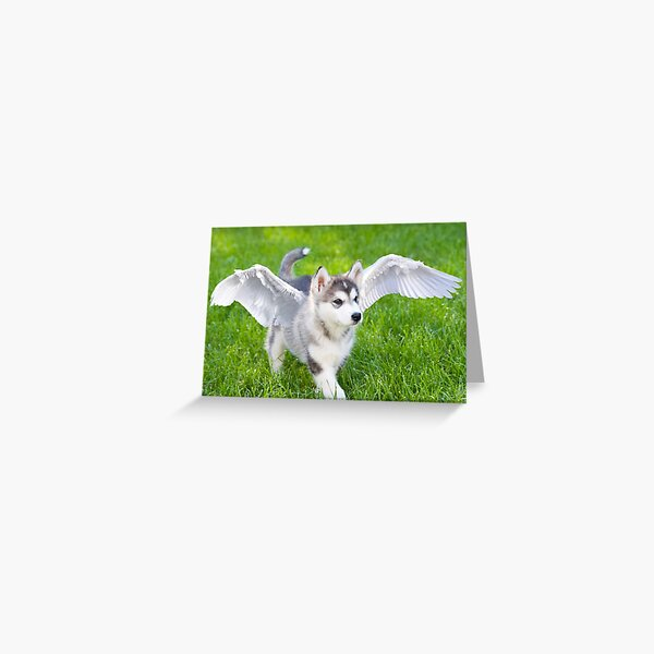 Angel puppy Greeting Card