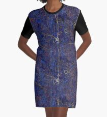 Neuron Graphic T-Shirt Dress
