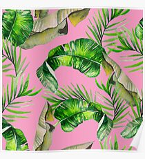 TROPICAL LEAVES & PINK Poster