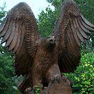 Eagle by Linda Miller Gesualdo