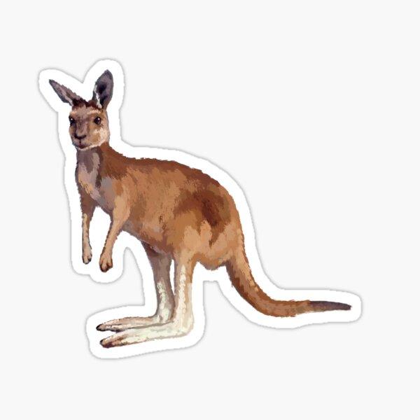 KANGAROOS CROSSING VINTAGE LOGO SIGN SWEATSHIRT PULLOVER Känguru Australien
