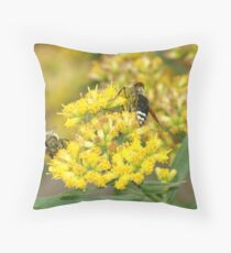 092109-387 Throw Pillow